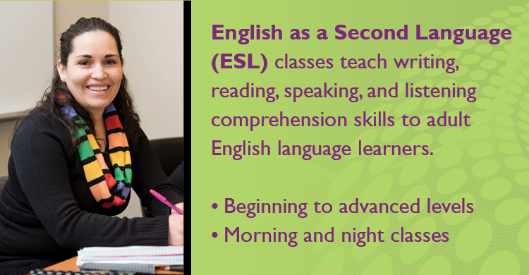 ESL classes teach writing, reading, speaking, and listening comprehension skills to adult English language learners