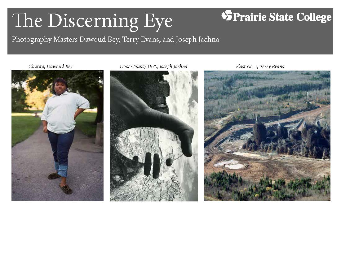 The Discerning Eye Postcard Front