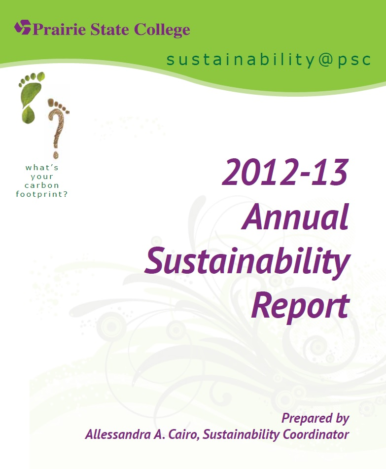 2013 annual sustainability report cover graphic
