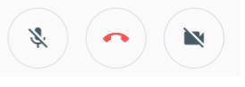 Google Meet screenshot of correct teleconferencing settings